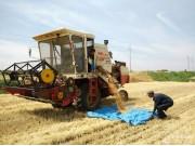 农机通网站2016年三夏跨区作业播报即将启动