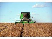 农机成为黑土地增收利器 倒逼土地适度规模经营