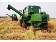 准确判断中国经济不能忽视农业指标