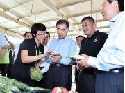 汪洋:加快互联网在农业中应用 全面提高农业现代化水平