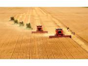 淘宝卖农机 动辄十万的机器你会买吗?