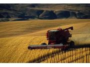 农业现代化热度持续 一号文件强势关注