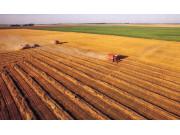 汪洋:深入推进农业供给侧结构性改革