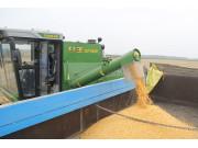 籽粒机及小型玉米机市场最具潜力