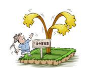 """""""三权分置""""引领农业现代化新征程"""