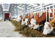 畜牧产业农机化的下一个风口