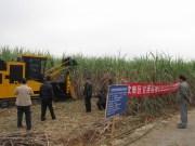 浙江恒丰机械在广西举办甘蔗机械化收割现场演示会