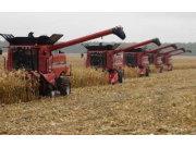 玉米全程机械化还需在籽粒收上下功夫