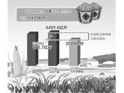 玉米收储制度改革全面启动 市场定价农民不吃亏
