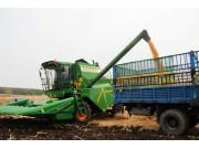 玉米亩产价格下跌,寻求农民增收新突破