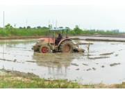 湖北60万台农机一线救灾