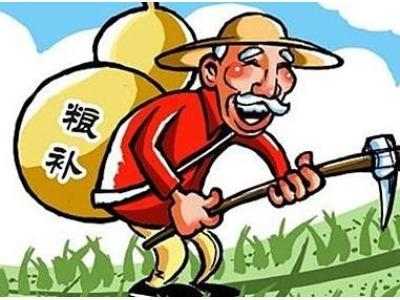农业部将农民补贴资金列入专项整治重点