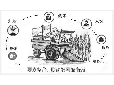 """江苏""""粮王""""成立联盟 多要素联动推进产业结构优化"""