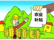 """农业补贴""""三合一""""改革遭遇新难题"""