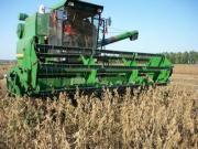小麦收割机开进大豆田