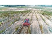 农业从此简单,橙色云协同研发设计成果10月26日即将发布