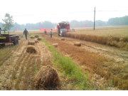"""环保农机化技术助力农业""""一控两减三基本"""""""