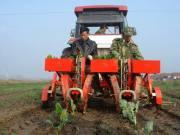 北京市确定2017年农机化工作重点