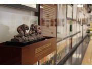 约翰迪尔中国历史展厅开幕
