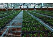 """农业转型""""绿色""""农机:无人机,助力绿色农业"""