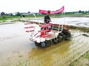 农业部:加快农机购置补贴实施进度