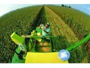 """破解粮食产业""""五高二低""""农产品价格形成机制应加快市场化"""