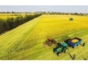 农村土地经纪人一年挣600万!怎么入行进来了解一下