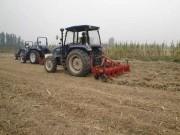 年年都用旋耕机旋地对农作物有害?看完受益匪浅,别再做傻事了!