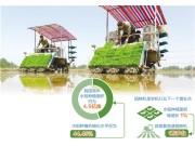 国产插秧机龙头崛起欲改格局 水稻种植机械化发展尚有很大空间