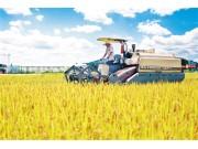 """农业农村部启动""""农业质量年""""八大行动"""