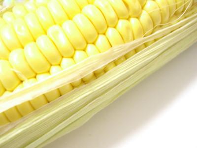 """三伏天来了 玉米还能""""热""""起来吗?"""
