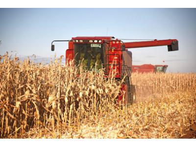 66384万吨!2019年全国粮食总产量创历史最高水平
