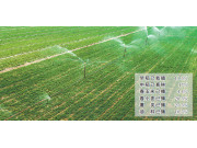 春耕进行时:全国已播各类农作物1.5亿亩