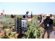 杰瑞华创国际先进果园机械 助力农业现代化建设