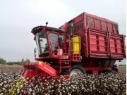 钵施然代表国产采棉机站起来了,销量远超外资品牌