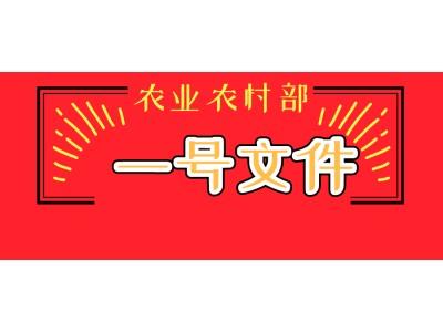 农业农村部一号文件发布(全文)
