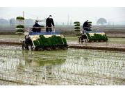 湖南农机发力早稻生产