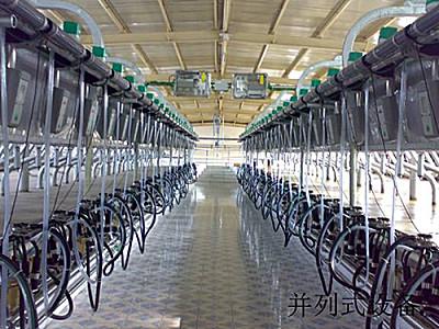 瑞海9JGD-BL-40并列式电子计量型挤奶机