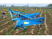 4U-2-1300马铃薯收获机