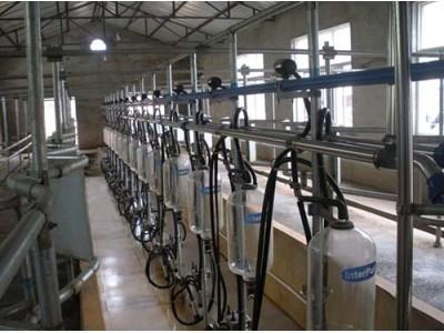 天润新东9JN-Z-10中置式挤奶机