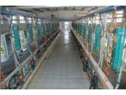 9J-BYMC200-2×16挤奶机