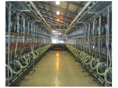 力欧9J-LEO-BL-2×24并列式挤奶机