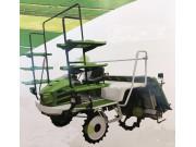 2ZG-825D1水稻插秧机