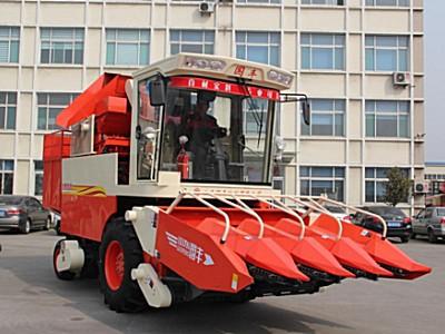 山东国丰4YZP-4F自走式玉米收获机