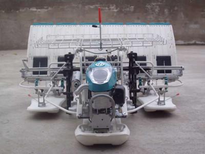 博迅精密2ZS-6手扶式水稻插秧机
