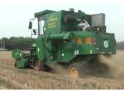 宁联谷物联合收获小麦作业现场