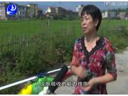 福建莆田电视台-深圳高科新农技术有限公司