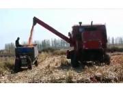 快三倍投盈利计划_新疆牧神4YZT-7自走式玉米籽粒机收获机作业视频