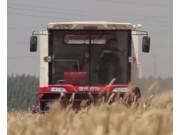 雷沃谷神GE70收割机产品宣传