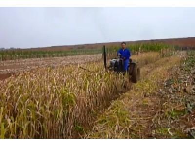 河南四达9G-1.25旋转割草机作业视频